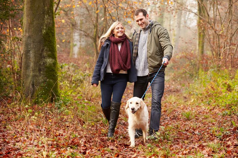 Un couple marche avec son chien